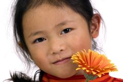 Pretty girl with a flower. A beautiful young girl with an orange flower Stock Photos