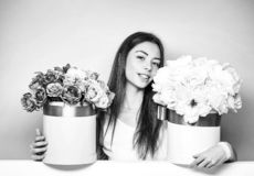 Pretty girl with flower boxes stock images