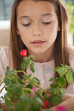Pretty girl with flowers Royalty Free Stock Image