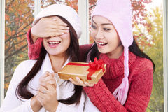 Pretty girl giving present to her friend Stock Photography