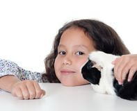 Pretty girl with guinea pig Stock Images