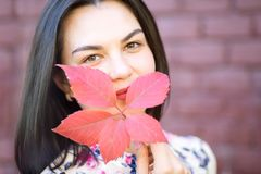 Pretty Girl hiding behind red autumn leaf a brick wall background stock images