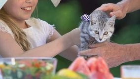 Pretty girl holding tabby kitten, spending time with grandparents, love for pet. Stock footage stock video footage