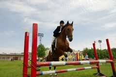 Pretty girl horse jump Stock Photography