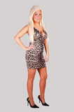 Pretty Girl In Panther Dress. Stock Photography