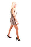 Pretty Girl In Panther Dress. Stock Photo