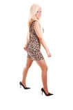 Pretty Girl In Short Dress. Royalty Free Stock Photography