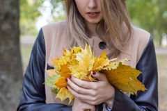 Pretty girl in jeans and coat with bright colored leaves walking in autumn park Royalty Free Stock Photos