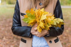 Pretty girl in jeans and coat with bright colored leaves walking in autumn park stock photo