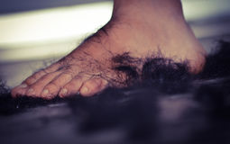 Pretty Girl Leg with Hair. Abstract of the Girl`s purity feet royalty free stock images