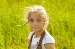 Pretty girl on the nature stock images