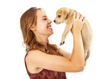 Pretty Girl Picking Up Little Puppy Royalty Free Stock Image
