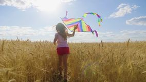 Pretty girl playing with kite in wheat field on summer day. Childhood, lifestyle concept. Pretty girl playing with kite in wheat field on summer day. Childhood stock video footage