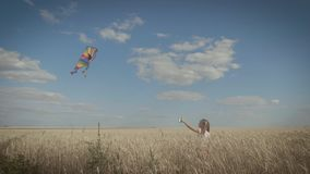 Pretty girl playing with kite in wheat field on summer day. Childhood, lifestyle concept. Pretty girl playing with kite in wheat field on summer day. Childhood stock video
