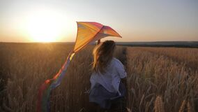 Pretty girl playing with kite in wheat field on summer day. Childhood, lifestyle concept.