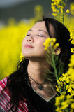 Pretty girl in rape flowers Stock Images