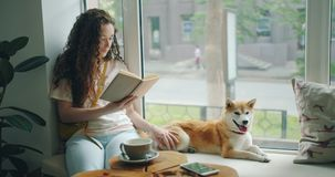 Pretty girl reading book and stroking puppy relaxing on window sill in cafe. Pretty girl is reading book and stroking shiba inu puppy relaxing on window sill in stock video footage