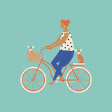 Pretty girl riding a bicycle carrying a basket with cute beagle puppy in. Stock Image