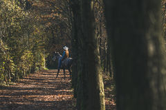 Pretty girl riding her grey horse Stock Photography