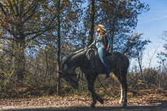 Pretty girl riding her grey horse Stock Photos