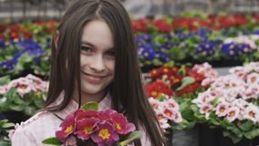 Pretty girl smells flowers with smile, poses and looks at camera stock footage