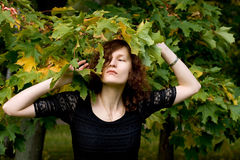 Pretty girl standing near maple tree Stock Photography