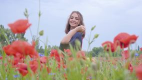 Cute adorable cute young woman standing in a poppy field holding flag of Germany in hands outdoors. Connection with. Pretty girl standing in a poppy field stock video footage