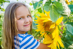 Pretty girl among sunflowers stock image