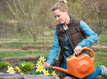 Pretty Girl Taking Care Of Garden. Watering Flowers From Waterin Stock Photography