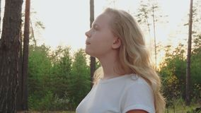 Pretty girl teenager walking in pine forest at sunny summer day. Beautiful blond girl walking in coniferous woodland on stock footage