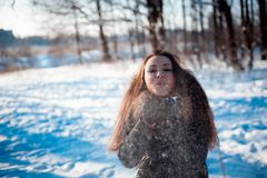 Pretty girl throws snow in the winter forest park royalty free stock image