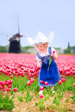 Pretty girl in tulips field with windmill in Dutch costume. Adorable curly toddler girl wearing Dutch traditional national costume dress and hat playing in a Stock Photos