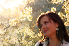 Pretty girl under cherry tree Royalty Free Stock Images