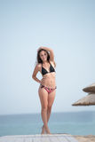 Pretty girl wear bikini standing on a wooden path in the sand Stock Image