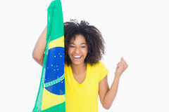 Pretty girl in yellow tshirt holding brazilian flag smiling at camera Stock Photography