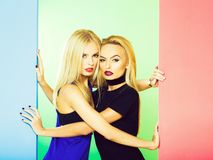 Pretty girls in colorful studio royalty free stock image