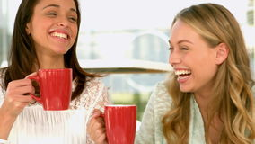 Pretty girls drinking and laughing. In slow motion stock video