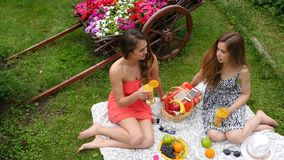 Pretty Girls Have Picnic from Top. 2 Girls Have A Picnic In A Garden, On A Beautiful Spring Day stock footage