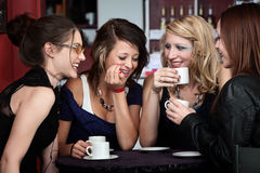 Pretty Girls Laughing. A foursome of pretty girls laughing in a cafe Royalty Free Stock Photo