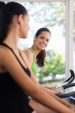 Pretty girls training on fitness bikes in gym Royalty Free Stock Photo