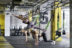 Sportive girls training in gym Royalty Free Stock Photos