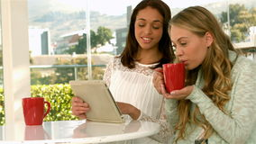 Pretty girls using tablet and drinking. In slow motion stock video footage