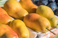 Pretty Golden Bartlett Pear Display in Farmer`s Market.  stock photo