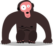 Pretty gorilla Stock Photography