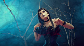 Pretty gothic girl wearing tight feather corset Stock Images
