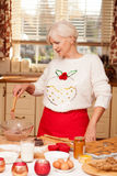 Pretty grandmother in kitchen, christmas time. Pretty grandmother baking cookies in kitchen, Christmas time Stock Image