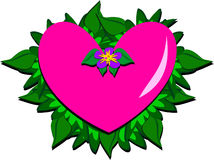 Pretty Heart with Flower and Deep Green Leaves Royalty Free Stock Photo