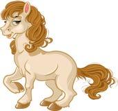 Pretty horse royalty free stock photos