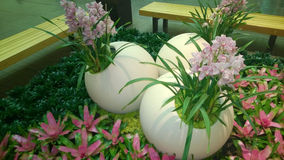 Pretty indoor garden design Royalty Free Stock Image