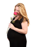 Pretty Irish pregnant woman Stock Images